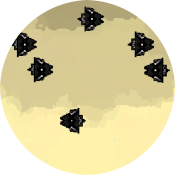 10 патронов