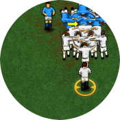 Чемпионат по регби