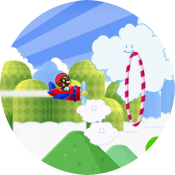 Марио пилот
