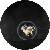 Заплыв в пузырях